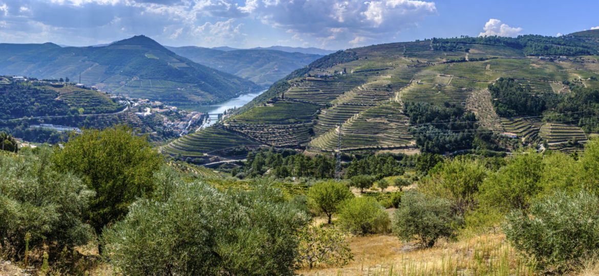 As paisagens do Douro